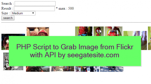 PHP Script to Grab Image from Flickr with API