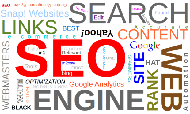 Boost Traffic With SEO Basic How To Make A WordPress Website Looks Professional.png