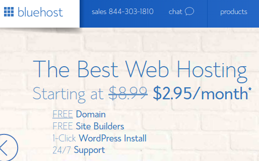 Recommend Hosting Bluehost How To Make A WordPress Website Looks Professional