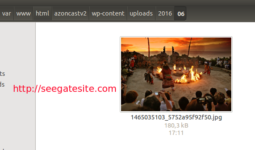 Upload Image Successfully Simple Way Of Retrieve And Upload An Image From URL On WordPress Programmatically