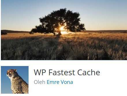 Wp Fastest Cache Plugin Best Caching Plugin WordPress